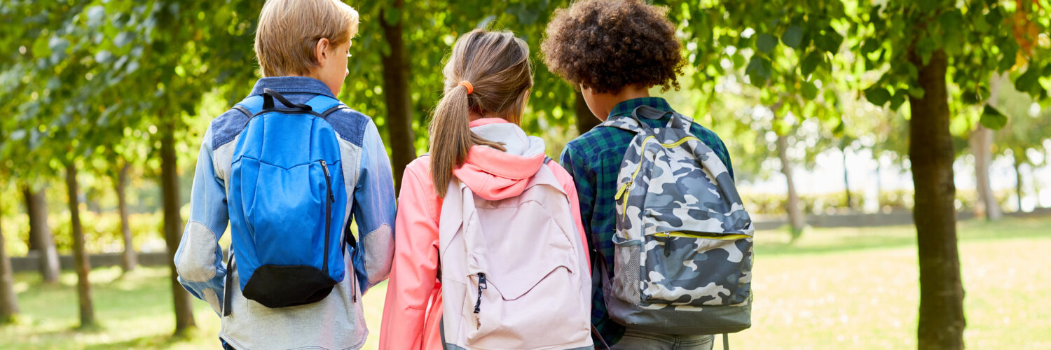 Rear view of school children with backpacks behind their backs walking to school together along the park